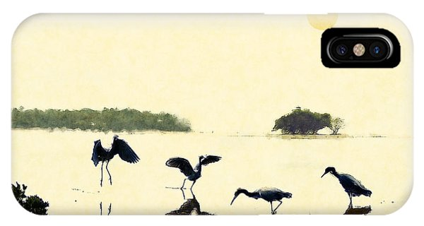 IPhone Case featuring the photograph birds feeding in the Everglades by Dan Friend