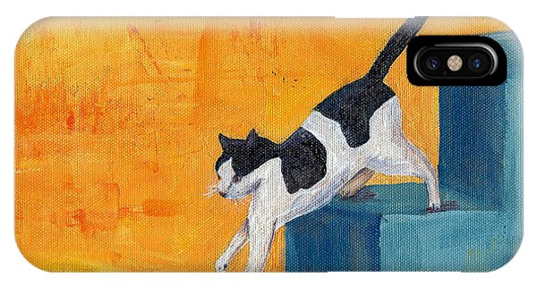 Black And White Cat Descending Blue Stairs IPhone Case