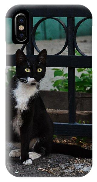 Black Cat On Black Background IPhone Case