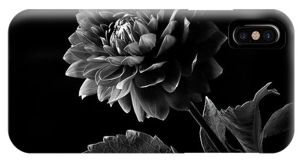 Black Dahlia In Black And White IPhone Case