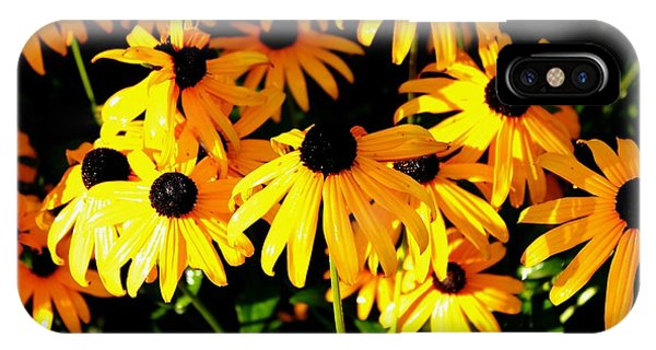 Black Eyed Susans Phone Case by Theresa Willingham