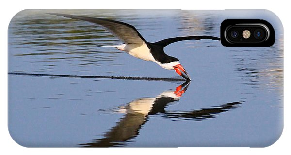 Black Skimmer IPhone Case