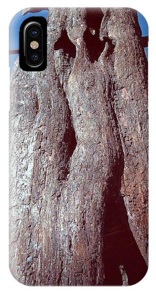 Death Valley iPhone Case - Black Tree by Naxart Studio