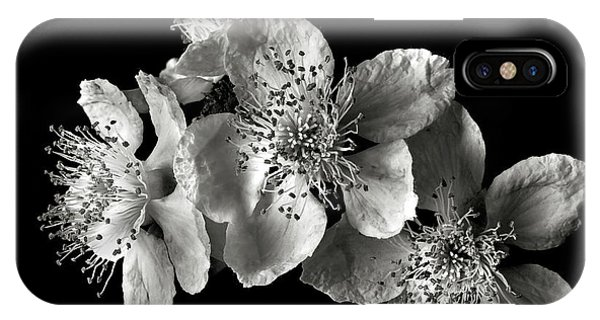 Blackberry Flowers In Black And White IPhone Case