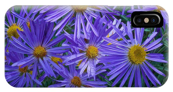 Blue Asters IPhone Case
