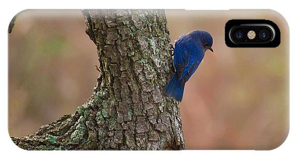 Blue Bird 2 IPhone Case