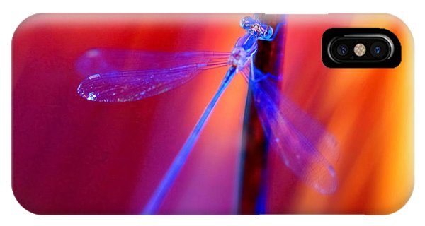 Blue Dragon Fly IPhone Case