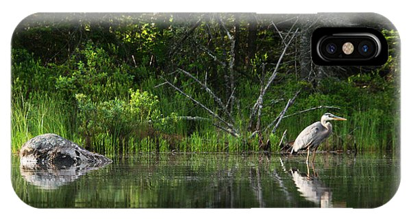 Blue Heron Long Pond Wmnf IPhone Case
