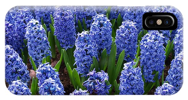Blue Hyacinth Phone Case by Larry Krussel