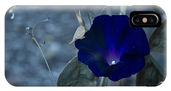 Blue Petunia 2 IPhone Case