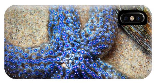 Blue Starfish IPhone Case
