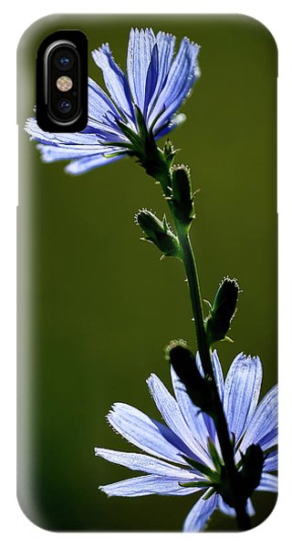 Blue Wildflower IPhone Case