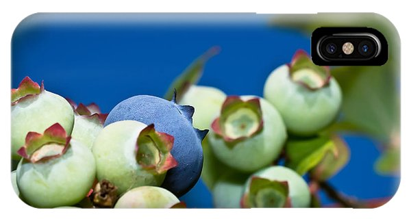 Blueberries And Sky IPhone Case