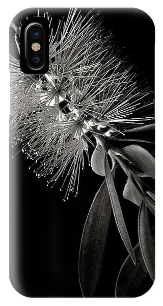 Bottlebrush In Black And White IPhone Case
