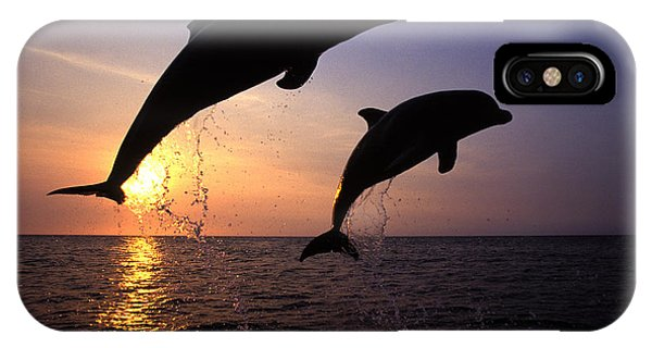 Dolphin iPhone Case - Bottlenose Dolphins by Francois Gohier and Photo Researchers