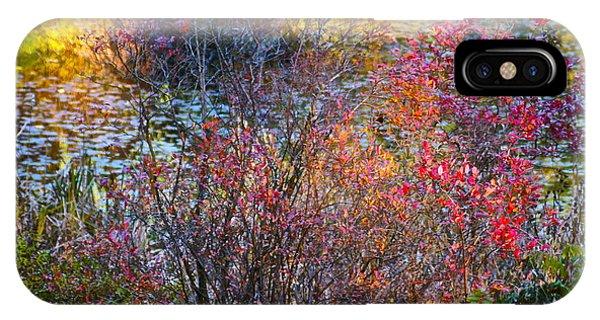 Bright Autumn Light IPhone Case