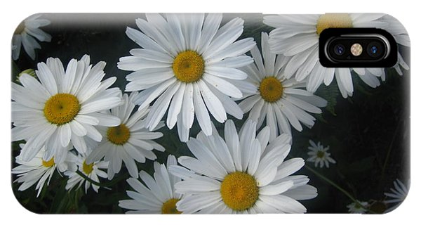 Bright Eyed Daisys IPhone Case