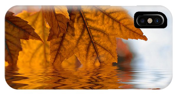 Bronze Reflections In Autumn IPhone Case