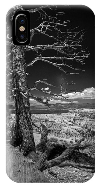 Bryce Canyon - Dead Tree Black And White IPhone Case