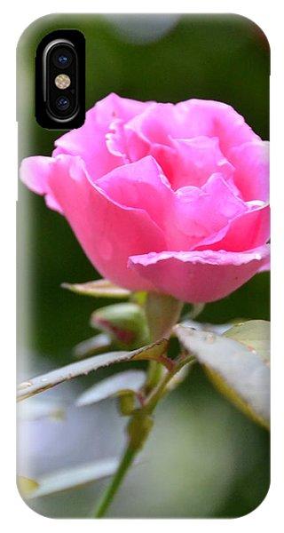 Bubblegum Rose IPhone Case