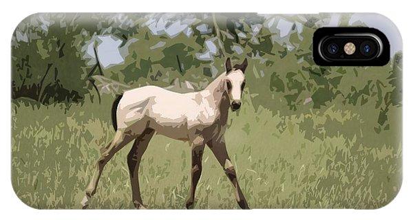 Buckskin Pony IPhone Case