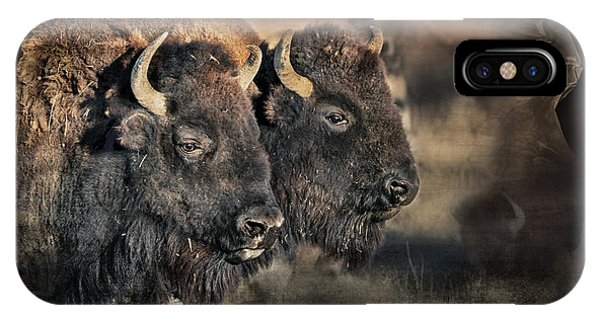 Buffalo Head IPhone Case