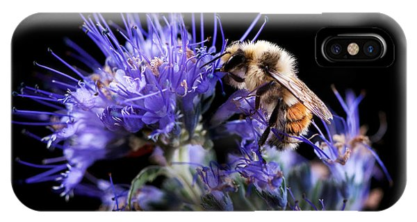 Bumble Bee On Blue Flower IPhone Case