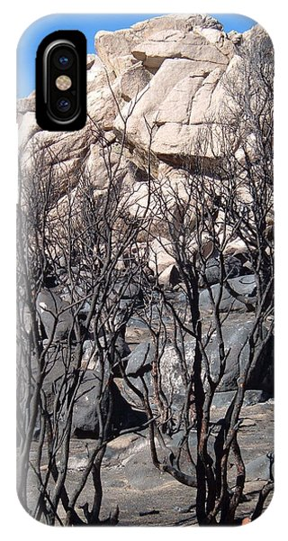 Death Valley iPhone Case - Burned Forest 3 by Naxart Studio