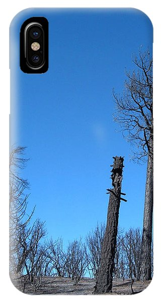 Death Valley iPhone Case - Burned Trees 1 by Naxart Studio