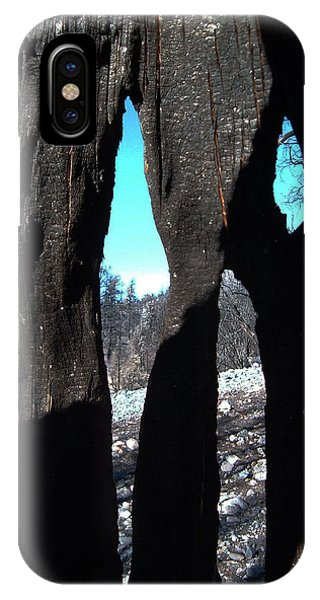Death Valley iPhone Case - Burned Trees 10 by Naxart Studio