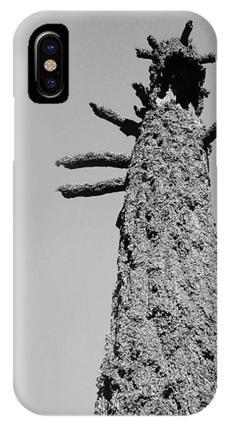 Death Valley iPhone Case - Burned Trees 4 by Naxart Studio