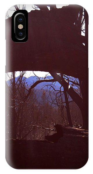 Death Valley iPhone Case - Burned Trees 9 by Naxart Studio