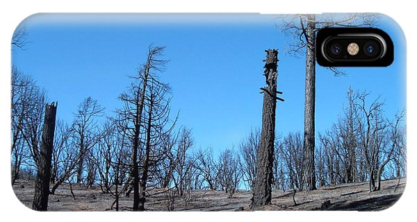 Death Valley iPhone Case - Burned Trees In California by Naxart Studio