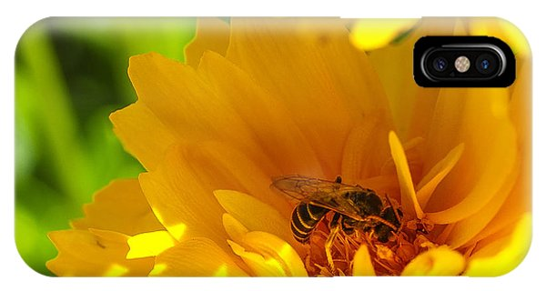 Pollination iPhone Case - Busy Bee  by Scott McGuire