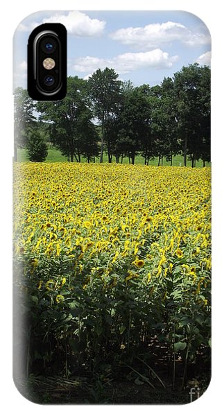 Buttonwood Farm IPhone Case