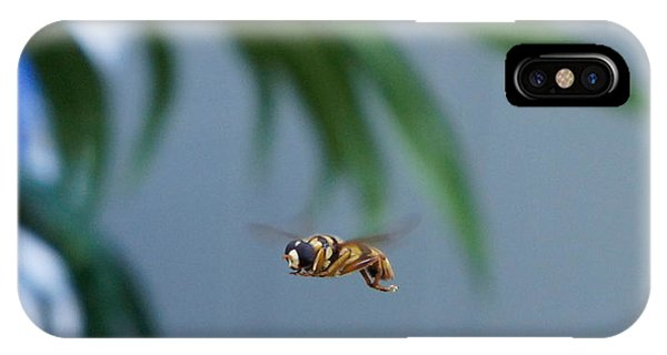 Buzz Of The Hover Fly IPhone Case
