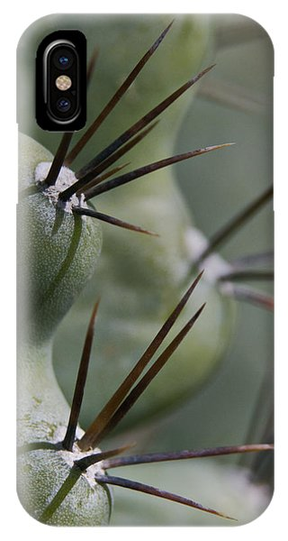 Cactus Macro IPhone Case
