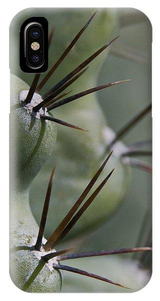 Cactus Macro IPhone Case