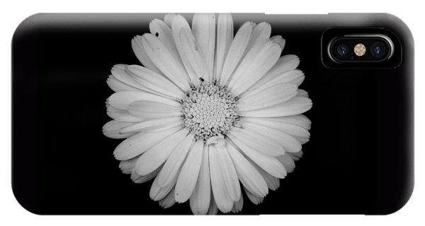 Calendula Flower - Black And White IPhone Case
