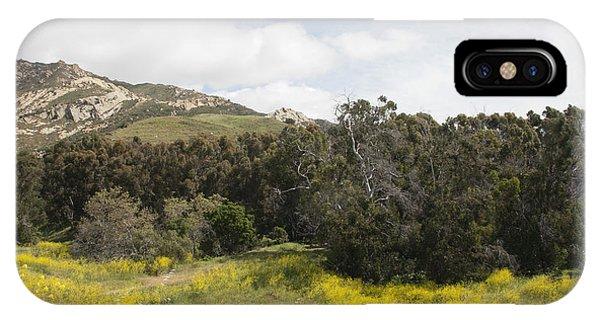 California Hillside View IIi IPhone Case