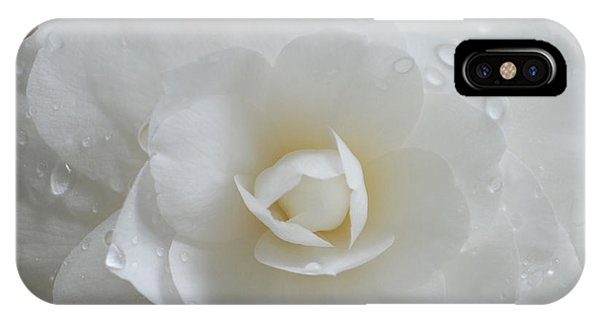Camellia After Rain Storm IPhone Case
