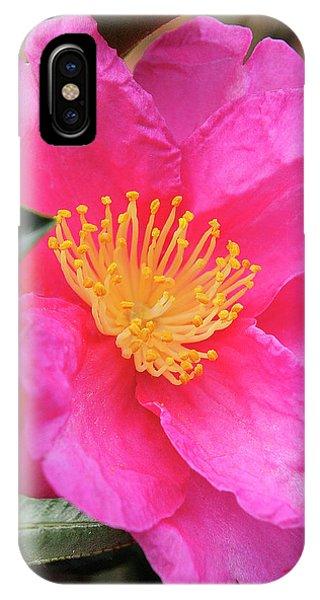 Camillia IPhone Case
