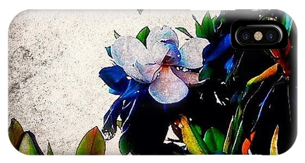 Edit iPhone Case - Canvas Magnolia by Mari Posa