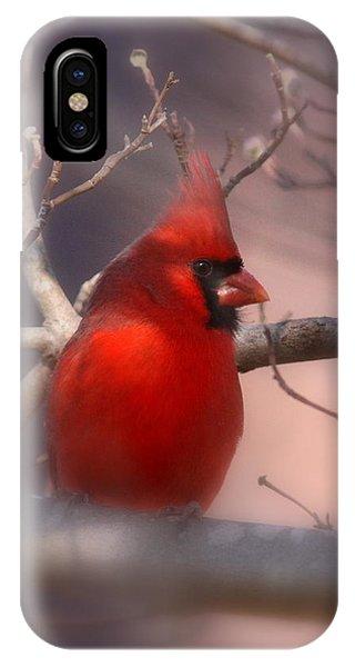 Cardinal - Unafraid IPhone Case