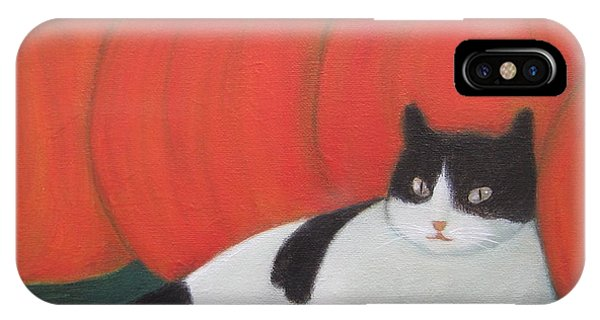 Cat And Pumpkins  IPhone Case