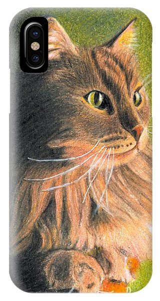 Cat Miniature IPhone Case
