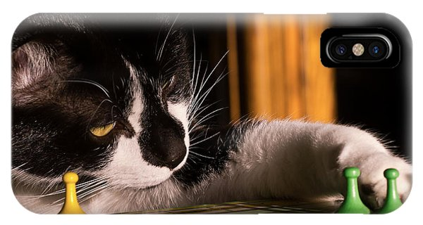 Cat Playing A Game IPhone Case