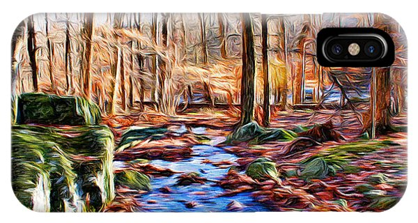 Catoctin Mountain Park iPhone Case - Catoctin Woods by Stephen Younts