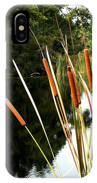 Cattails On The River Bank IPhone Case