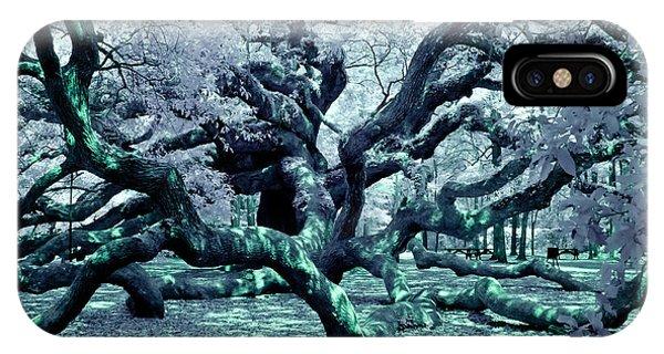 Charleston's Angel Oak IPhone Case